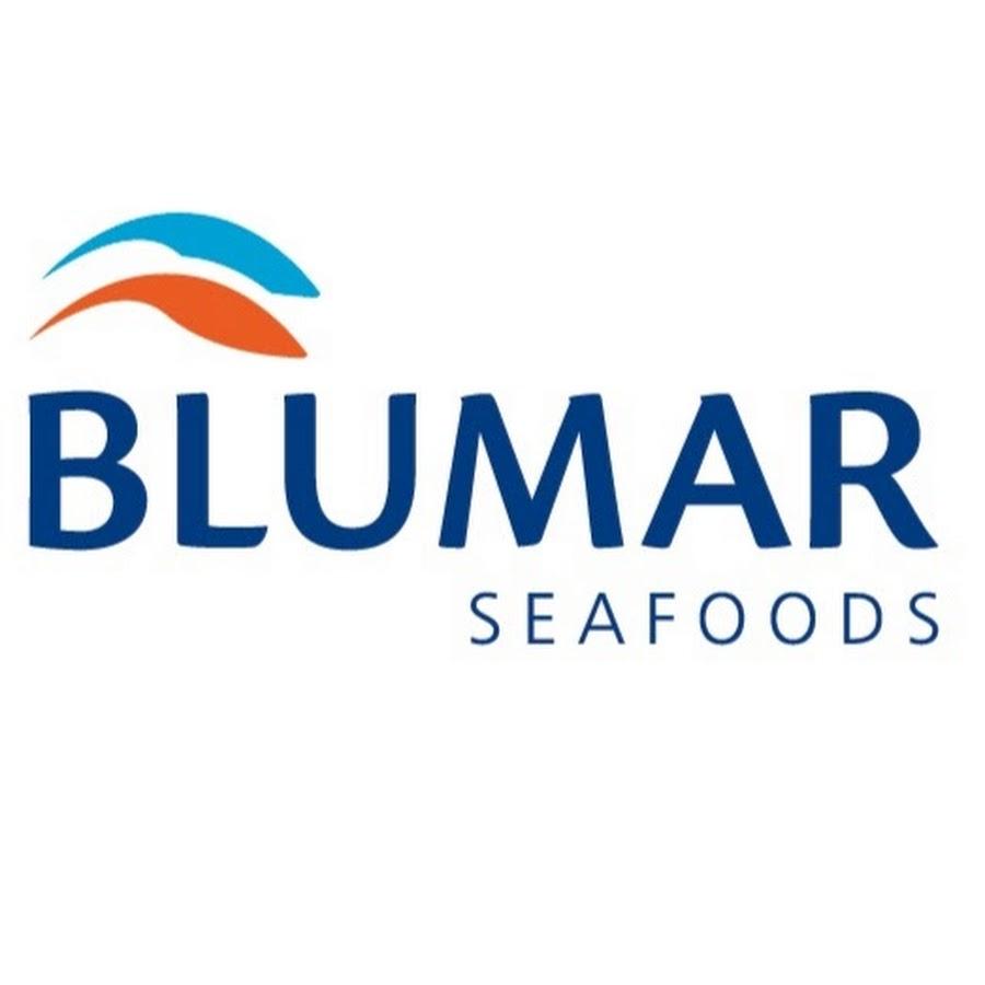 Blumar Seafoods S.A.
